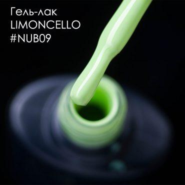 nub09insta